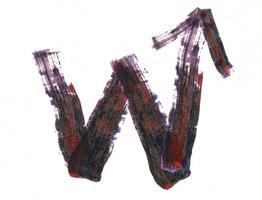 wild Up | WORK - Ellen Reid | ODYSSEUS