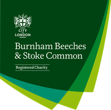 Burnham Beeches logo