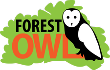 Forest Owl - Forest School logo