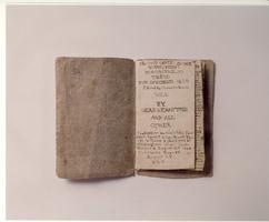 The Lives and Works of The Brontës: A Talk by Ann...