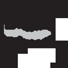 Mamas With Cameras logo