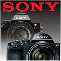 Sony DSLT and Mirrorless Camera Class - $29.95 LA