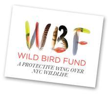 Wild Bird Fund logo