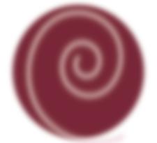BirthFocus NYC logo