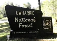 Beginner Backpacking in Uwharrie National Forest