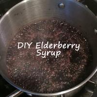 DIY Elderberry Syrup Class