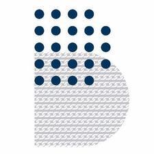 Hong Kong Blockchain Society 香港區塊鏈學會 HKBCS 港鏈會 logo