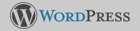 WordPress Social Media Classes