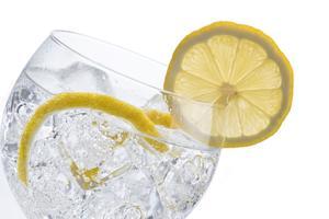 Gin Tasting (Windsor)