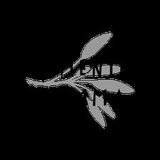 The Fermented Mumma logo