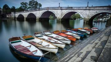 Richmond Rowing Boat Hire Discount Voucher