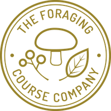 The Foraging Course Company logo
