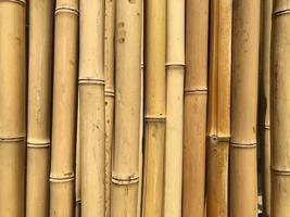 CraftLab: Bamboo Wind-chimes and Hanging Sculptures Workshop
