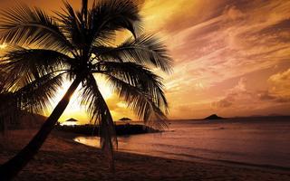 GRAND HAWAIIAN - Two Week Dream Vacation