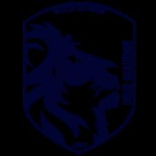 Neue Akademie logo