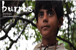 Burros (Donkeys) Film Screening