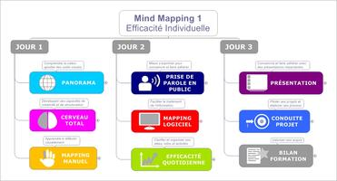 Formation Mind Mapping Efficacité Individuelle 3 jours...