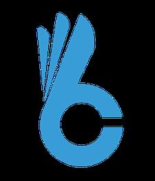 Raanan Nedivi - CEO ShareLook  logo