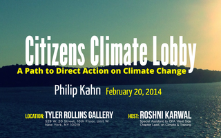 A Path to Direct Action on Climate Change