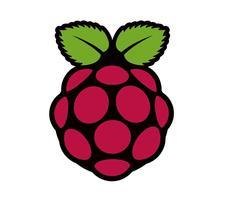 Raspberry Pi Workshop at Gants Hill Library