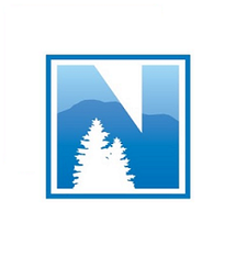 PMI The Northern Nevada Chapter logo