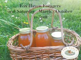 Fox Haven Food and Medicine Foraging Series: Wild...