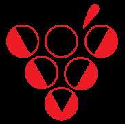 Vinovium logo