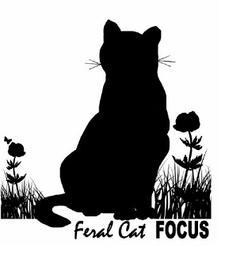 Feral Cat FOCUS Inc. logo