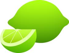 The L.I.M.E.Light Agency logo