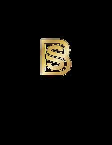 BOLD & SAVVY logo