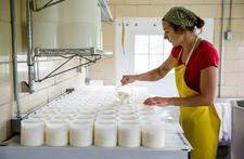 Valley Milkhouse Creamery logo