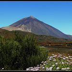 MOOCAfé Tenerife