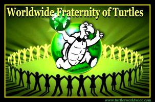 Become A Turtle!