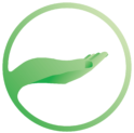 Mindful Practices logo