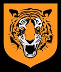 Hull City Ladies logo
