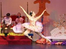 San Francisco Youth Ballet Academy logo