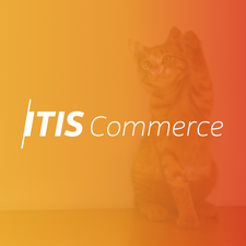 ITIS Commerce logo