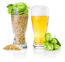 Home beer brewing class at Wirtshaus!