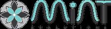 Mint eSolutions logo
