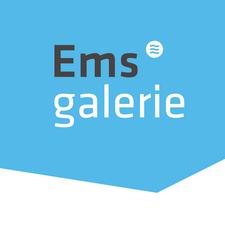 Werbegemeinschaft Emsgalerie Rheine e.V. logo