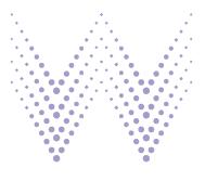 Women in Wireless logo