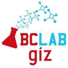 GIZ Blockchain Lab  logo