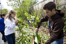 Environmental Studies Program at Tufts University logo