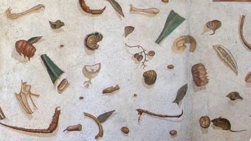 Roman Dining: a Guide to Status and Mores