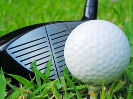 Spring Swing: A Miniature-Golf and Golf Day Mixer