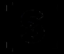 Screenology Film School logo