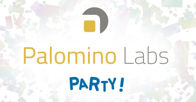 Party at the Palomino Labs Office