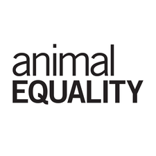 Animal Equality  logo