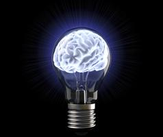 Brain School 2014