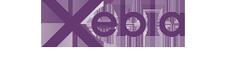 Xebia & EmailVision logo